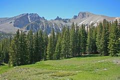 Landschaft mit Wiese, Wald und Bergen lizenzfreies stockbild