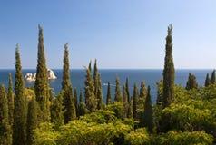 Landschaft mit Zypressewaldung im Vordergrund Lizenzfreies Stockfoto