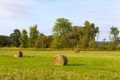 Landschaft morgens Lizenzfreie Stockfotos