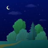 Landschaft, Nachtsommerwald Lizenzfreies Stockfoto