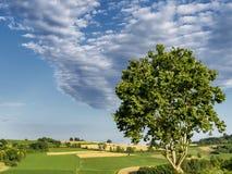 Landschaft nahe Calliano, Monferrato, Italien stockfotografie