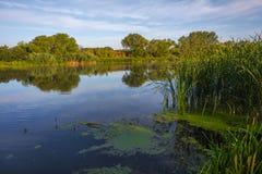 Landschaft nahe dem Myhiia-Fluss ukraine lizenzfreie stockfotos