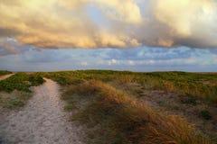 Landschaft nahe dem Strand mit Sonnenuntergang lizenzfreie stockfotografie