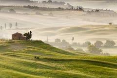 Landschaft nahe Pienza, Toskana, Italien stockfotografie