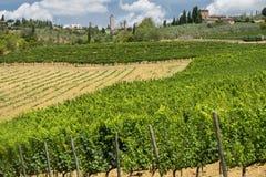 Landschaft nahe San Gimignano Toskana stockfoto