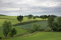 Landschaft nahe Wijlre Lizenzfreies Stockfoto