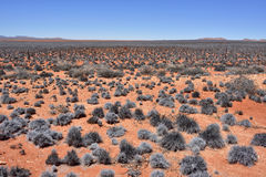 Landschaft Namibischer Wüste, Namibia, Afrika Stockfotos