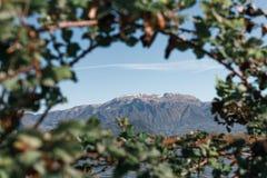 Landschaft natürlicher Reserve Torbiere Del Sebino in Lombardei stockfoto