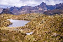 Landschaft in Nationalpark Cajas, Cuenca, Ecuador lizenzfreies stockbild
