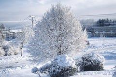 Landschaft Neu-England verschneiten Winters Biddeford Maine lizenzfreie stockfotografie