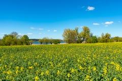Landschaft in Nord-Deutschland im Frühjahr Stockfoto