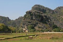 Landschaft - Nord-Vietnam Lizenzfreie Stockfotografie