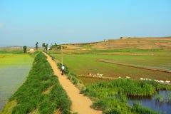 Landschaft, Norden-Korea Lizenzfreies Stockbild