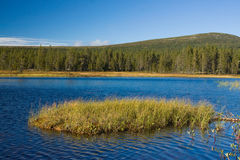 Landschaft in Norwegen Stockbild