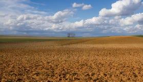 Landschaft pflügt Land-Land und Ernten Stockfotografie