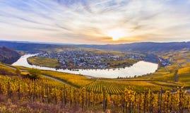 Landschaft Piesport Moselschleife Stockfotos