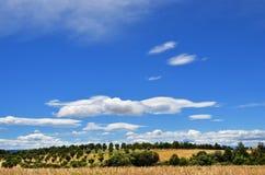 Landschaft, Provence, Frankreich Lizenzfreies Stockfoto