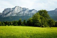 Landschaft in Salzkammergut Stockbild