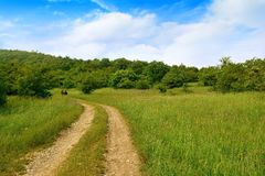 Landschaft, Schotterweg und grüne Anpflanzungen Lizenzfreies Stockbild