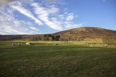Landschaft in Schottland Aberdeenshire Nationalpark Cairngormss stockfotografie