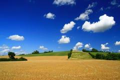 Landschaft am Sommer stockfotografie