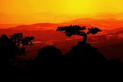 Landschaft am Sonnenuntergang Stockfoto