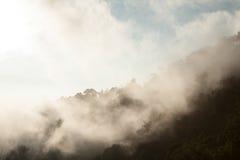 Landschaft, sonnige Dämmerung auf einem Gebiet Stockfoto