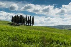 Landschaft in Toskana Lizenzfreies Stockbild