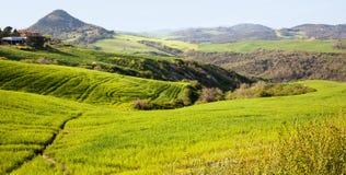 Landschaft in Toskana Stockfotografie