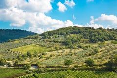 Landschaft in Toskana stockbilder