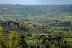 Landschaft, Toskana Val D'Orcia Stockfotos