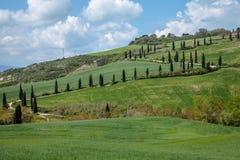 Landschaft, Toskana Val D'Orcia Stockbild