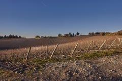 Landschaft, Toskana Val D'Orcia Stockfoto