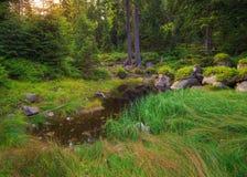 Landschaft, Tschechische Republik Lizenzfreie Stockbilder