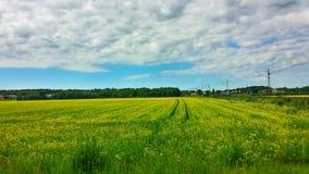 Landschaft u. Feld Stockfotografie
