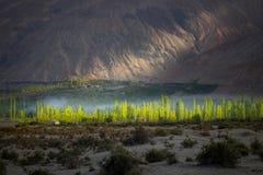 Landschaft um Nubra-Tal in Ladakh, Indien Stockbilder