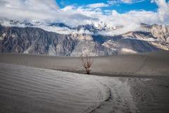 Landschaft um Nubra-Tal in Ladakh, Indien Lizenzfreie Stockbilder