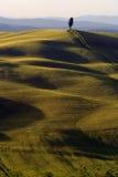 Landschaft um Siena benannte Kreta Senesi Lizenzfreie Stockfotografie