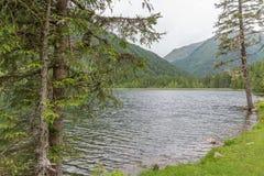 Landschaft und See Etrachsee in Österreich lizenzfreies stockbild