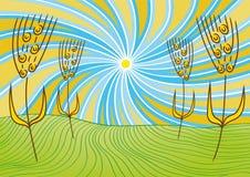 Landschaft und Weizen Lizenzfreies Stockbild