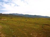 Landschaft in Usbekistan Stockfotos