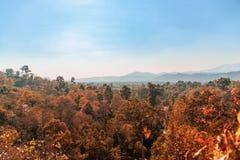 Landschaft vom hohen Boden mit Sommerwaldberg und nettem blauem Himmel stockbilder