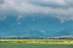Landschaft von Apuseni-Bergen in Rumänien Lizenzfreie Stockbilder