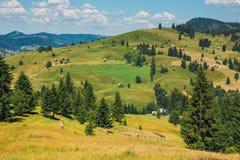Landschaft von Apuseni-Bergen in Rumänien Lizenzfreies Stockfoto