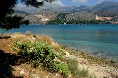 Landschaft von Argostoli mit blauem Meer und einer Feigenanlage stockbild