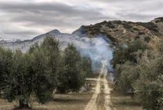 Landschaft von Basilikata-Landschaft Stockfotografie