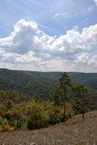 Landschaft von bewaldeten Bergen Stockfotos