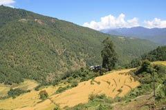 Landschaft von Bhutan Stockfotos