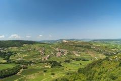 Landschaft von Burgunder, Weinberge Stockbild