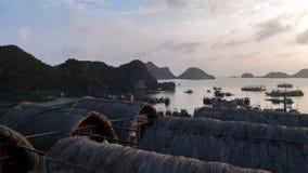 Landschaft von Cat Ba Island mit Bungalow, lange Bucht ha, Vietnam-timelapse stock video